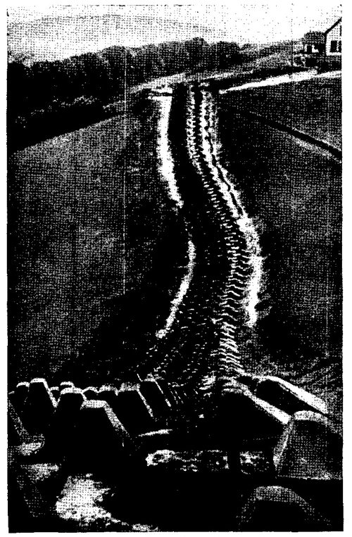Figure 54.—Dragon's teeth obstacle.