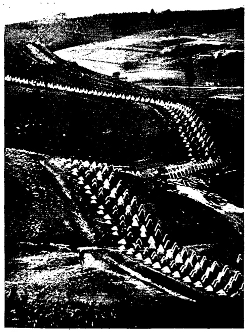 Figure 55.—Dragon's teeth obstacle adapted to broken terrain.